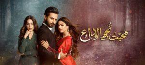 09-Muhabbat_Tujhay_Alvida_Hum_TV